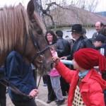 Copiii şi caii deschid baza hipică