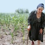 Biruri grele pe capul agricultorilor