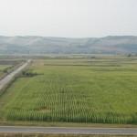 Circuitul terenurilor agricole, staţionar!