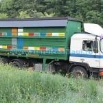 Pentru apicultori, ITP la trei ani