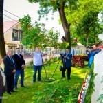 107 ani de la moartea lui Nicu Albu