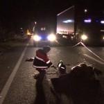 Pietrean de 36 de ani ucis pe șosea de altul de 63 de ani