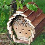 """Sfaturi pentru grădină: """"hotel"""" pentru… insecte"""