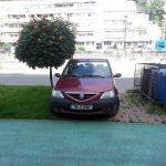 Fotografia zilei: Dacia pe Dacia, așa nu!