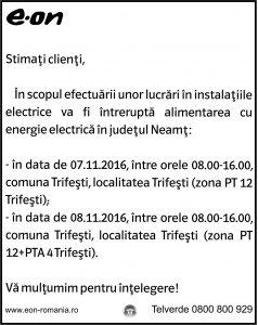 neamt_04-11-3