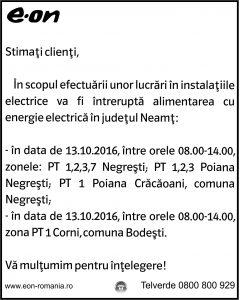 neamt_10-10-3