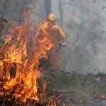 Incendii atipice în Neamț, dar și multe de la coșul de fum