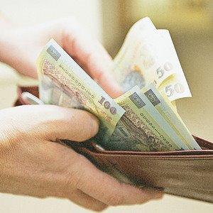 portofel-cu-bani