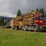 padure transport lemn