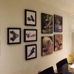 toma3 showroom
