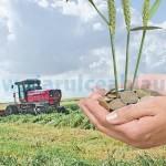 APIA-plateste-126-45-miliarde-lei-catre-beneficiarii-PNDC-din-sectorul-vegetal-si-zootehnic
