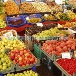 Tina-Legume fructe, foto