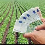 agricultura-bani_02134400