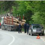 lemn Busteni jandarmi ijj lemn
